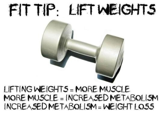 fittip